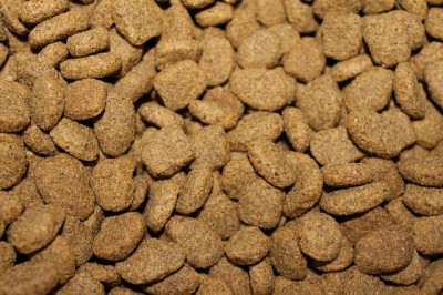 kibble meat by product