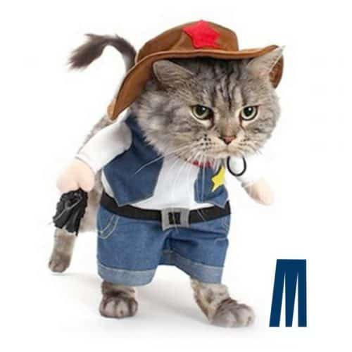 best halloween cat costume cowboy-cat  sc 1 st  Fluffy Kitty : cat dinosaur costume  - Germanpascual.Com