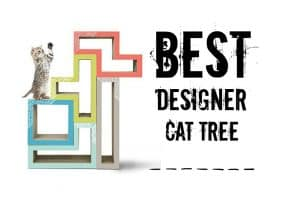 best designer cat tree furniture header