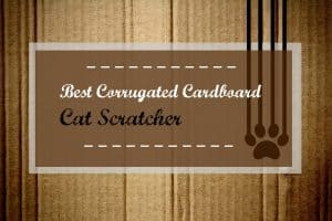 best-corrugated-cardboard-cat-scratcher-header