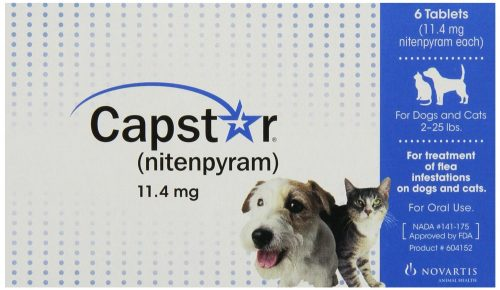 capstar best oral flea treatment for cats