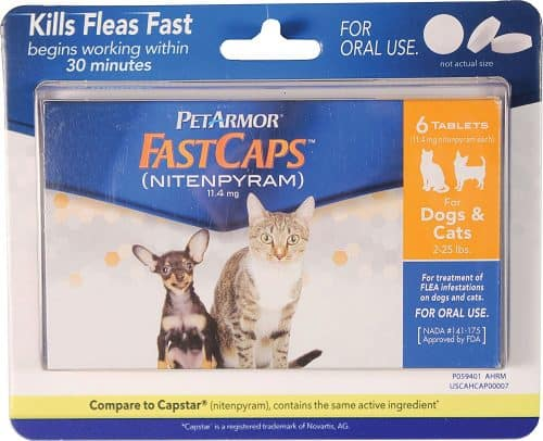 Fastcaps best oral flea treatment for cats