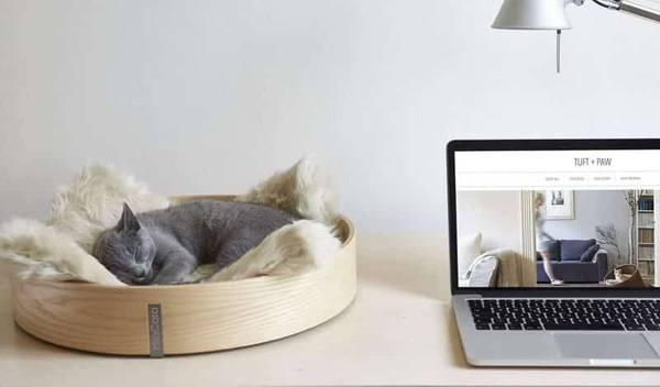 That is why we have launched a competition for the next design to rethink  cat furniture  Not only will the winning design be produced and promoted  here at. Win  1 500 with Tuft   Paw Cat Furniture Design Competition