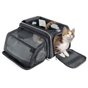 Best Cat Carriers/ Fluffy Kitty