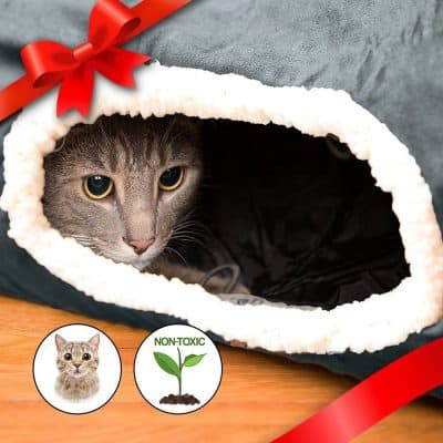 Best Christmas Gifts for Cats/Fluffy Kitty