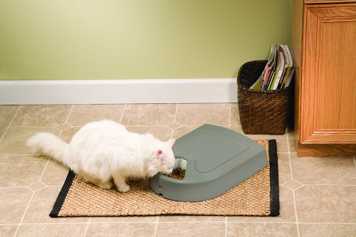 Petsafe 5-Meal Automatic Dog and Cat Feeder | FK