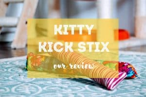 Kitty Kick Stix Review | Fluffy Kitty