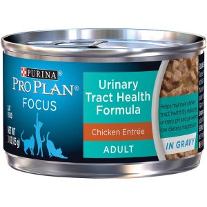 Best Cat Food for Urinary Tract Health