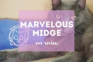 Marvelous Midge Review | Fluffy Kitty