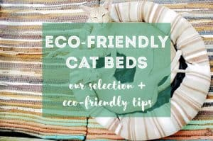 Eco-Friendly Cat Beds | Our Selection