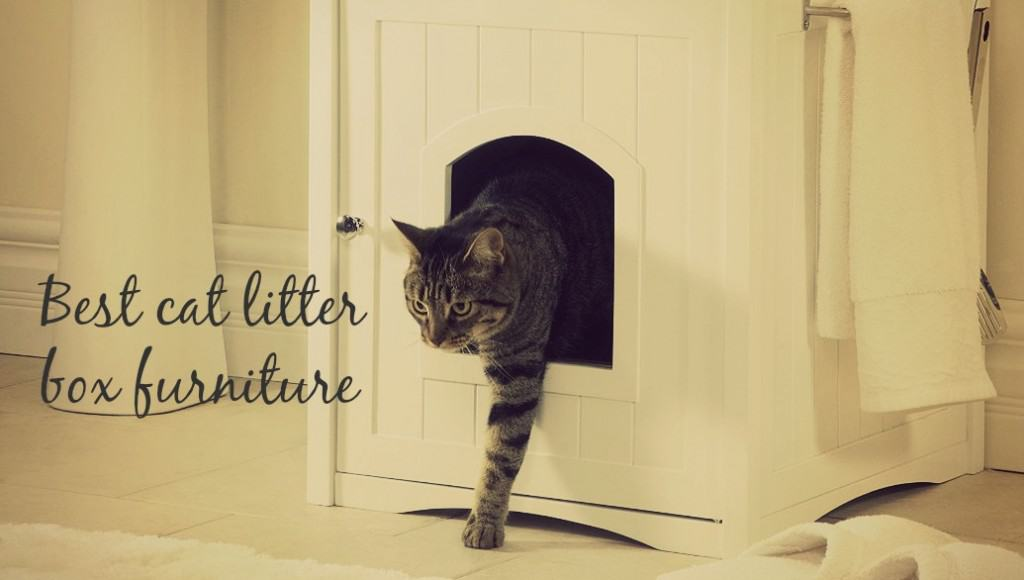 best cat litter box furniture