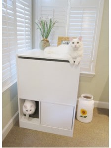 out of sight litter box