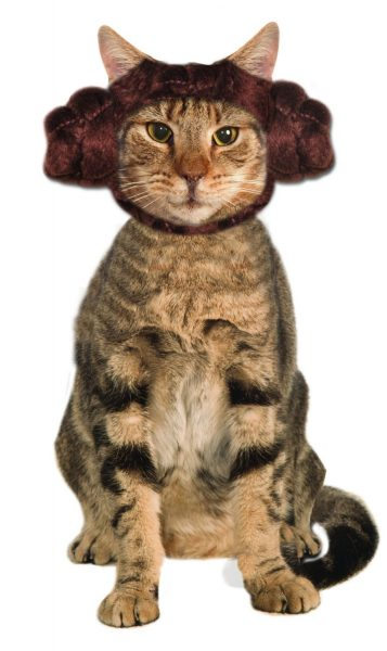 best halloween costume for cat lady princess-leia-cat