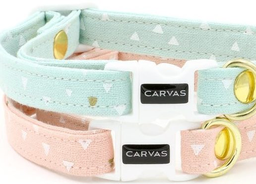 Best cat collars - Fluffy Kitty