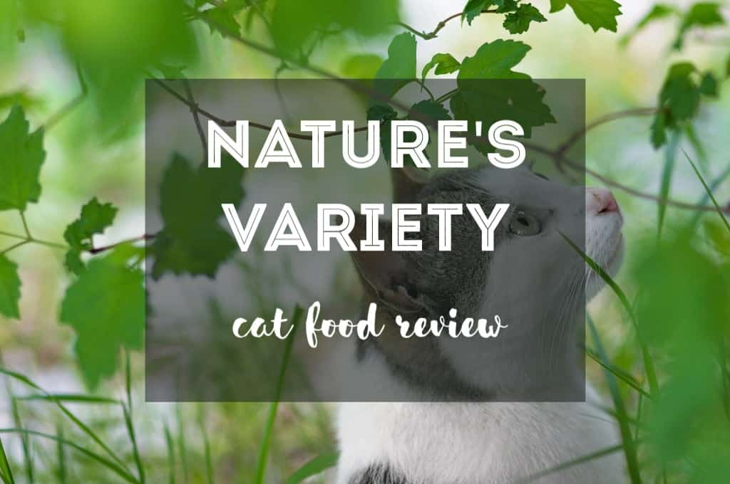 Natures Variety Instinct Cat Food Review 2019 Fluffy Kitty