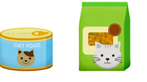 Food Cats Can't Eat   Fluffy Kitty