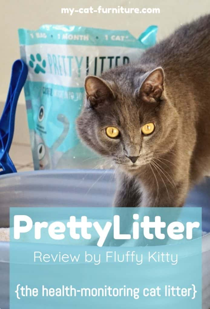 Ultimate PrettyLitter Review 2018-2019 | Fluffy Kitty Blog