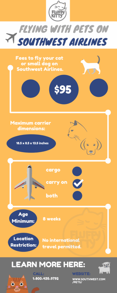 Southwest Pet Policy | Best Airlines for Cats by Fluffy Kitty